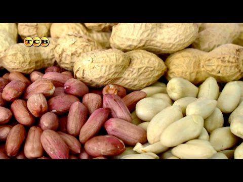 Выкапывание арахиса и подготовка его к хранению. - YouTube
