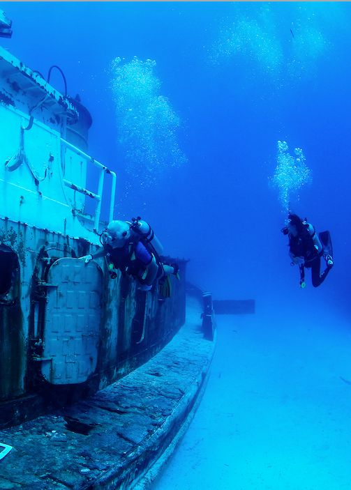 Bimini Scuba Center Sinks Multiple Wrecks Off North Bimini!  Four in one great location for divers and wildlife to enjoy!  Click the image for the whole story.