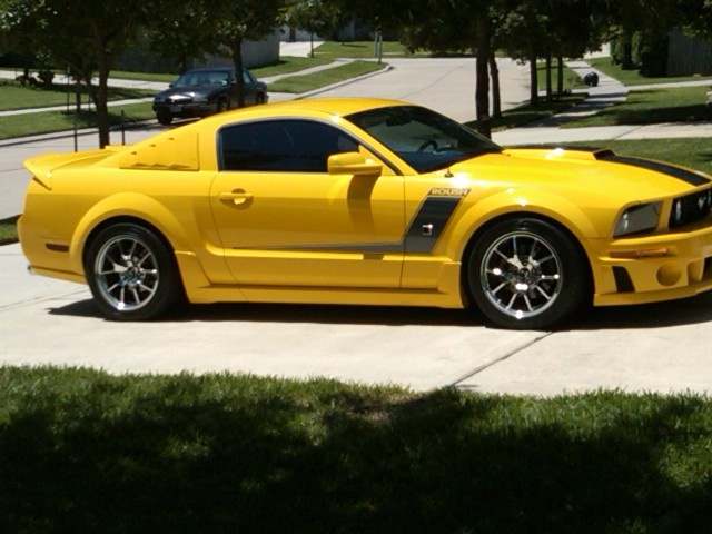 some day ill get my Roush Mustang