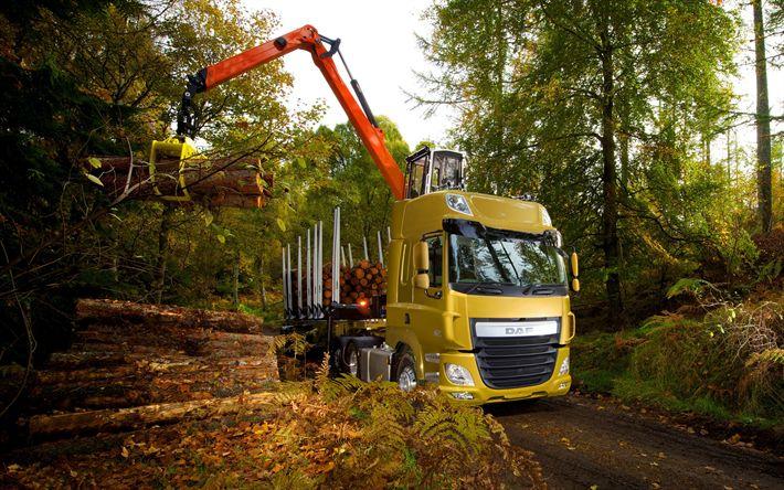 Download wallpapers DAF CF, 2017, wood transportation, forest, truck mounted crane, timber carrier, Euro6, DAF CF 510 FTR