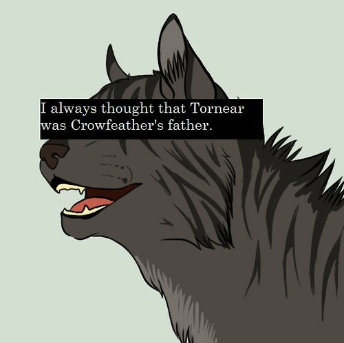 695 Best Images About Warrior Cats On Pinterest
