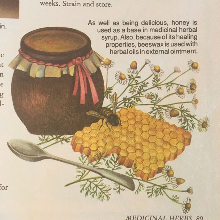 "riverselkie: "" herb book aesthetics """