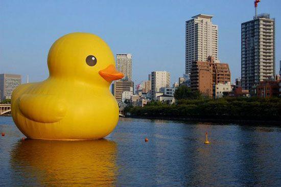 Giant duck invades Osaka