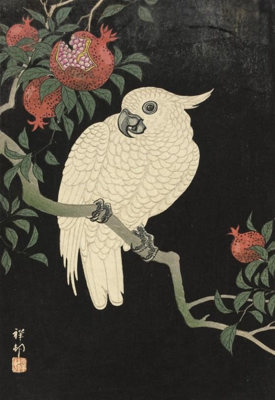 Cockatoo and Pomegranate Ohara Shōson (Koson) (Japan, 1877-1945) Japan, 20th century Prints; woodcuts Color woodblock print Image: 9 3/4 x 6 5/8 in. (24.8 x 16.8 cm); Sheet: 10 x 6 7/8 in. (25.4 x 17.5 cm) Marguerite H. Niedeck Bequest (AC1996.85.1) Japanese Art