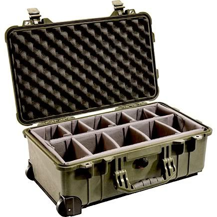 Life, with pictures...: REVIEW: PELICAN CAMERA CASE
