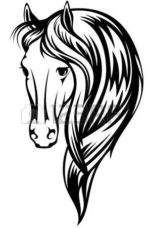 Ilustraci�n hermoso caballo - esquema blanco y negro de una cabeza con una larga melena photo