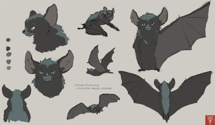 Shade Silverwing - bat character design attempt by Wilchur.deviantart.com on @DeviantArt