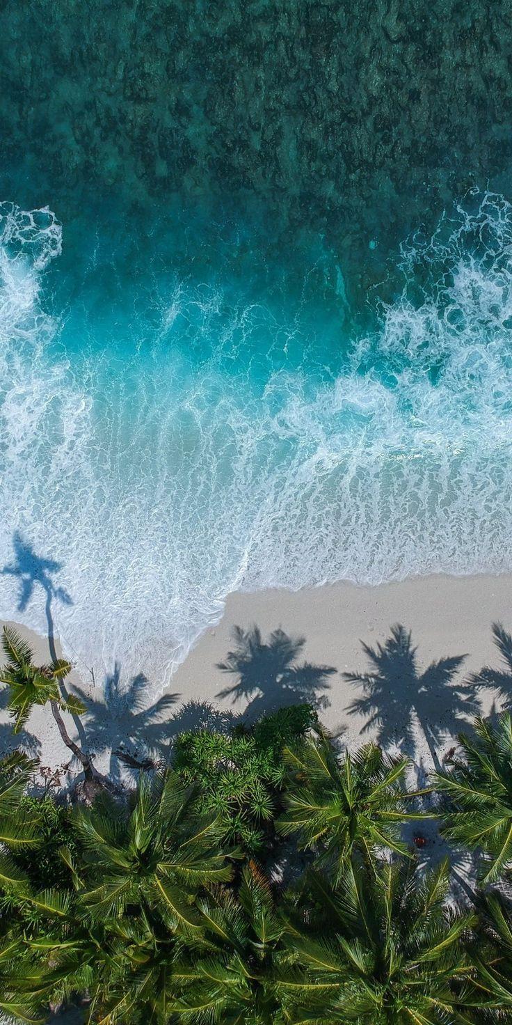 Nature Beach Palmtrees Ocean Blue Calm Ozean Beach Blue Calm Nature Ocean Ozean Palmt Iphone Hintergrund Sommer Naturbilder Fantasielandschaft