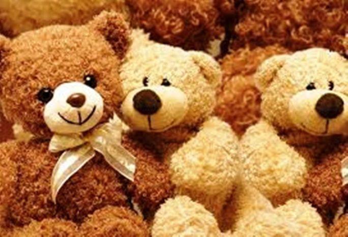 YEOVIL NEWS: Teddy bear's picnic at Country Park - Yeovil Press ...