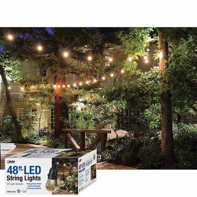Feit 48ft. LED Outdoor Weatherproof Color Changing String Light Set, Black
