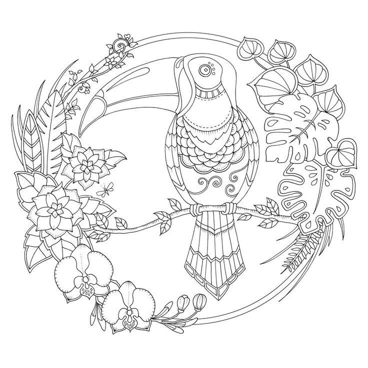 Волчицей надписью, открытки раскраски джоанны басфорд