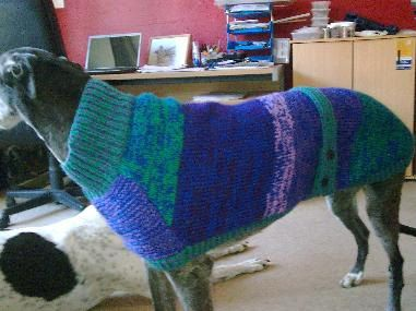 Knitting Patterns For Greyhound Coats : 1000+ images about Knitting on Pinterest Coats, Shops ...