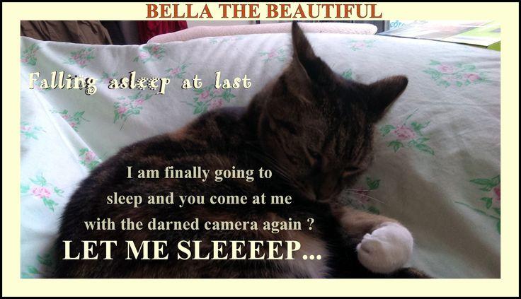♥  Bella The Beautiful, relaxing,♥