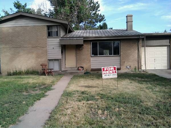 Craigslist Apartments Denver Co