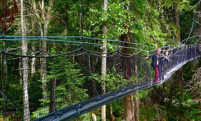UBC Botanical Garden - Vancouver: Admission to the Greenheart TreeWalk for One Person or a Family at UBC Botanical Garden (Up to 50% Off)