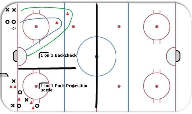 1v1 gap control and puck protection