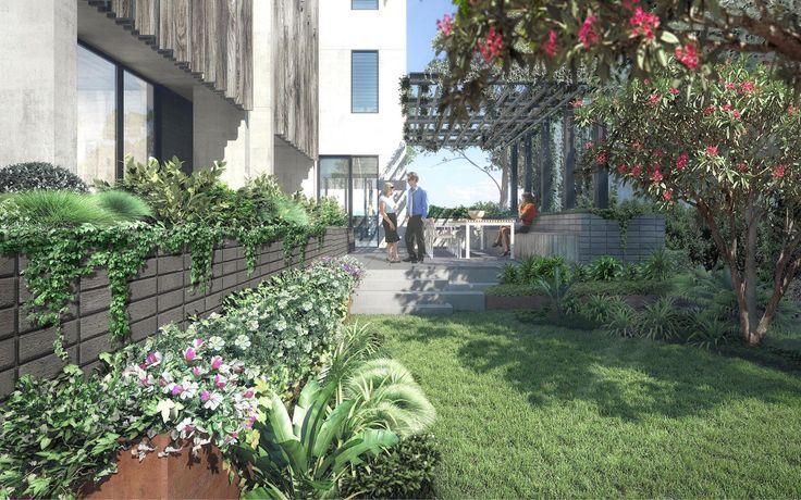 New environmentally sustainable studio apartment building in Bondi - rear common garden