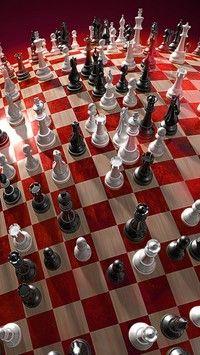 Piony na biało-czerwonej szachownicy