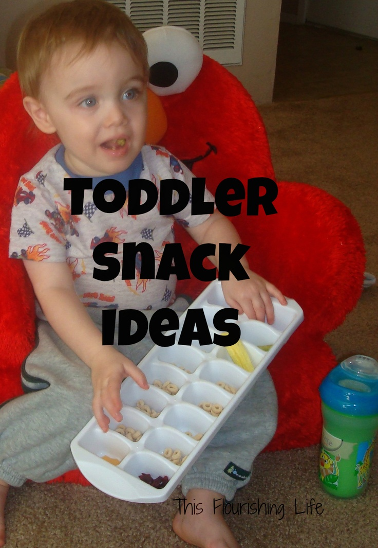 This Flourishing Life: Quick-Fix Healthy Toddler Snacks