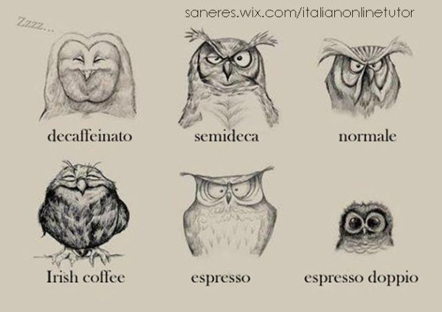 Anche i gufi e le civette prendono il caffè.  Courses&Prices: http://saneres.wix.com/italianonlinetutor Serena Italian's BLOG: http://serenaitalian.wordpress.com/ FB group: https://www.facebook.com/italian.online.tutor YouTube channel: http://www.youtube.com/user/serenafantasia