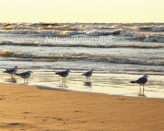 Check out this item in my Etsy shop https://www.etsy.com/ca/listing/493482681/nature-photography-sunset-on-beach