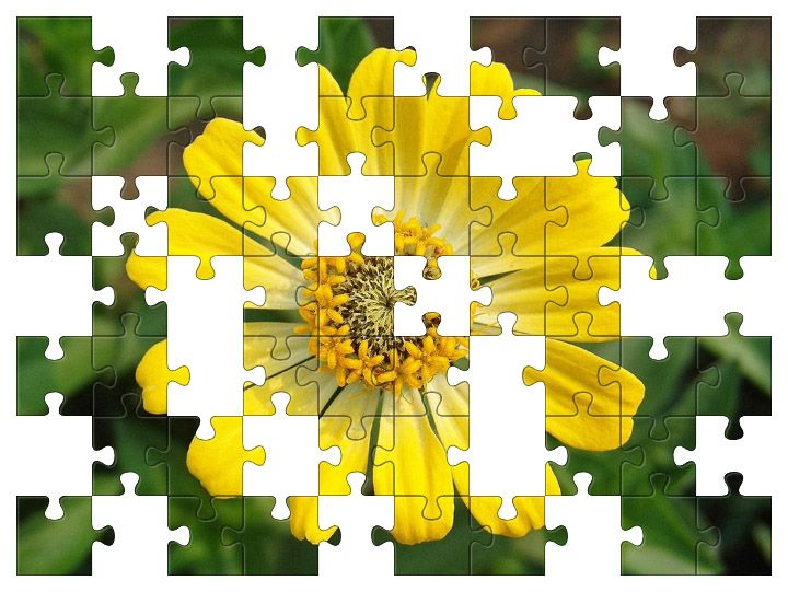 Free Jigsaw Puzzle Online - Yellow Flower