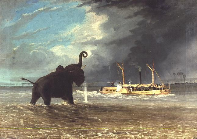 'Ma-Robert'-and-Elephants-in-the-Shallows-of-the-Shire-River-1858-xx-Thomas-Baines