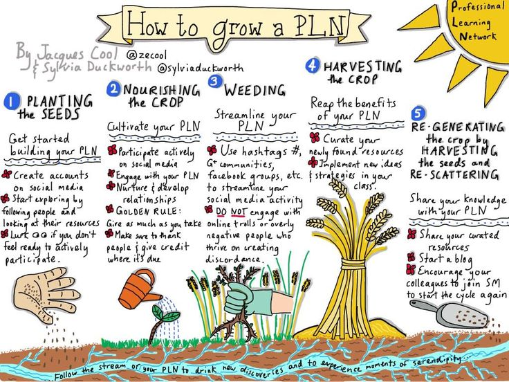 "Sylvia Duckworth on Twitter: ""How to grow a PLN #AIMlang #fslchat #cdnedchat @courosa @justintarte @joedale @TanyaAvrith http://t.co/QncnvSUBwJ"""