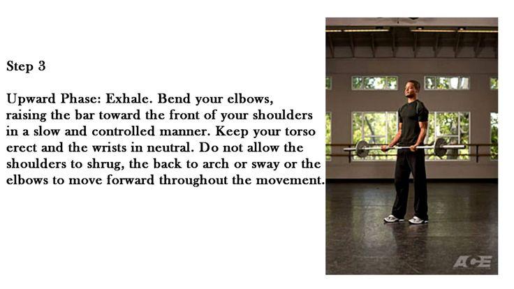 https://www.youtube.com/watch?v=KSzQ7BpY0ZY - Standing Barbell Curl