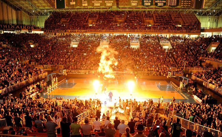 Παναθηναϊκός με παρελθόν, παρόν και μέλλον! (pics)   Μπάσκετ: Ευρώπη   gazzetta.gr