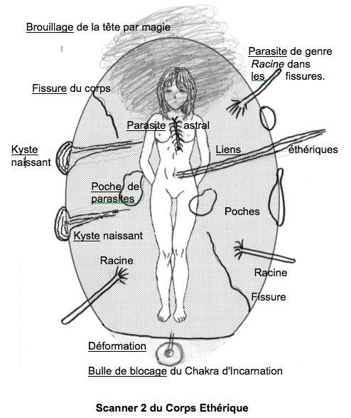 Le corps éthérique est celui qui alimente en énergies le corps physique. Il est le premier et le principal à être très affecté.  N...