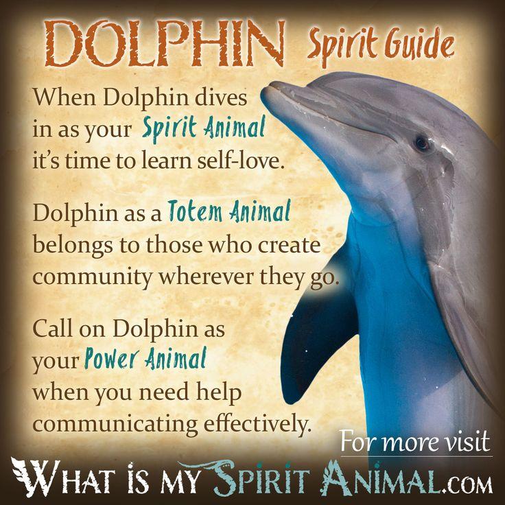 Dolphin Symbolism & Meaning | Spirit, Totem & Power Animal                                                                                                                                                                                 More