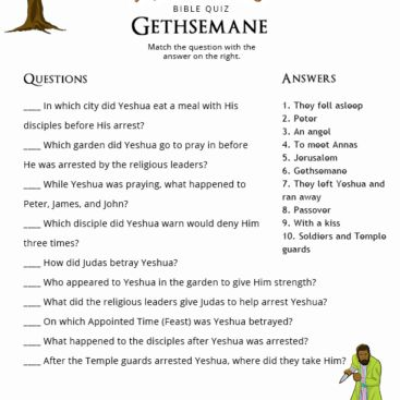 Free downloadable Bible Quizzes for kids, parents and teachers. Teach your children more about the Bible and Torah. A new quiz added weekly.