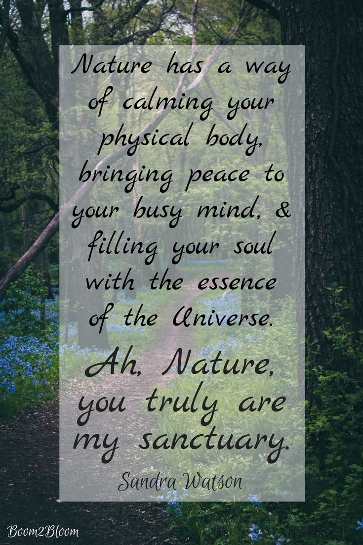 Nature Is My Sanctuary Quotes To Inspire Heal Psychology