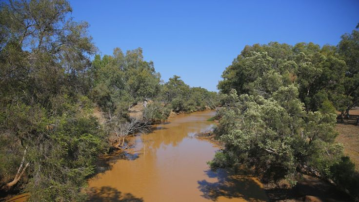 The Warrego River at the north of the Murray-Darling Basin has been both a blessing and a curse for the people of Charleville in south-west Queensland.  Were it not for the river, it is likely the small outback township would never have been established as it proved a wonderful water source for pioneers in the area.  However, the river has also brought the town to its knees.