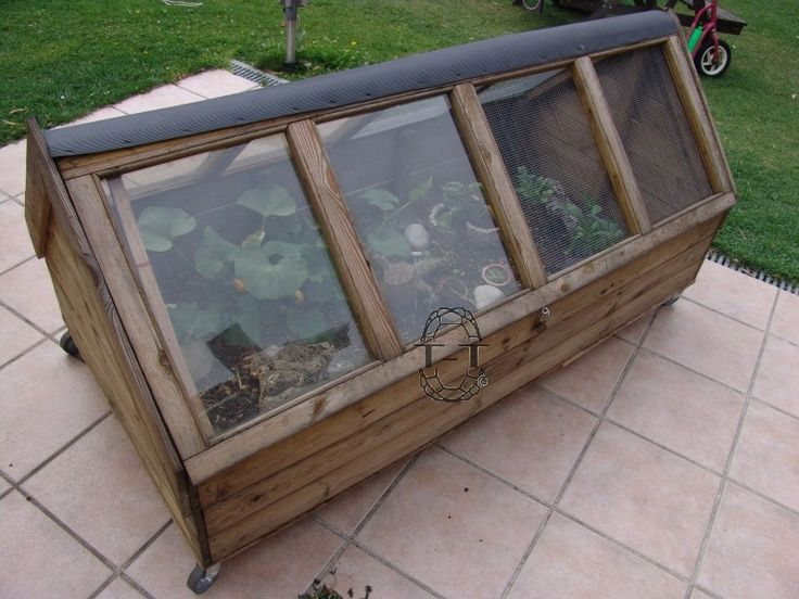 1000 id es sur le th me enclos pour tortue sur pinterest l 39 habitat de la tortue vivarium. Black Bedroom Furniture Sets. Home Design Ideas