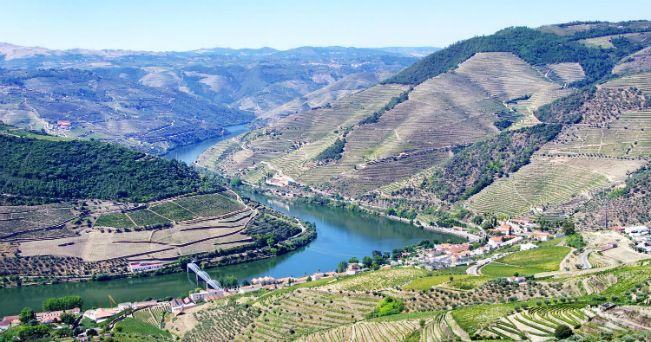 Valle del Douro, la culla del vino portoghese | Via Viaggi24 | 03.08.2015 - Un itinerario lungo il fiume Douro che dalla città di Porto arriva fino alla Spagna. Con tappe in santuari barocchi, case coloniche circondate da vigneti e siti preistorici #Portugal #travel
