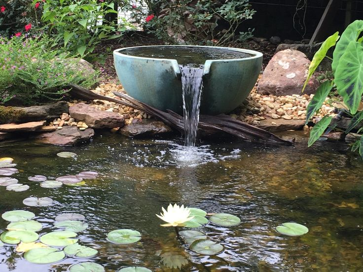 pond water paper Fix pond leaks pond leaks are most likely to occur in waterfalls if no water is lost from the pond then you can conclude the pond is holding water.