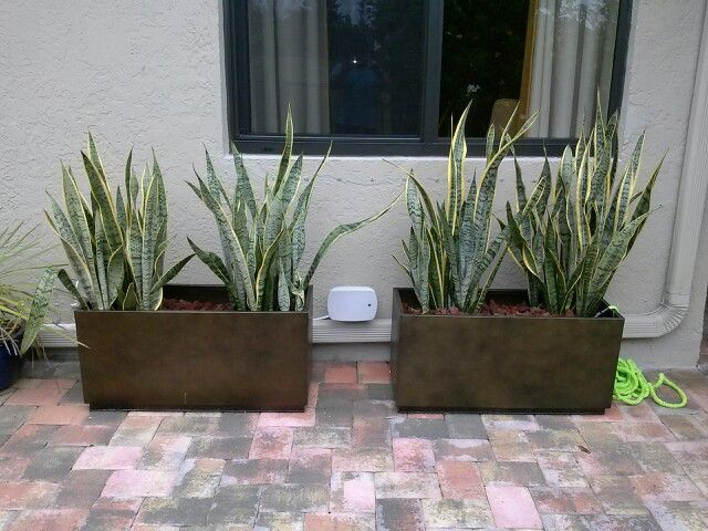 Outdoor Speakers Hidden Installations Pinterest