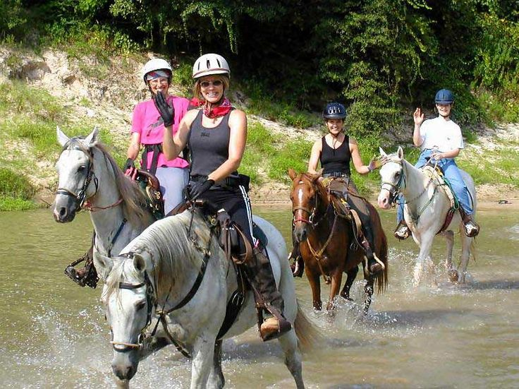 31 Best One Horse Power Trail Riding Images On Pinterest