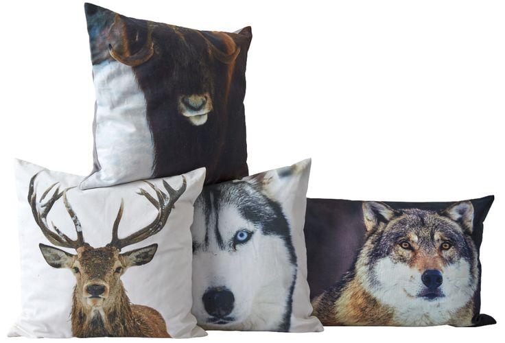 NYX, RENNA, BLAID & NOOR cushions