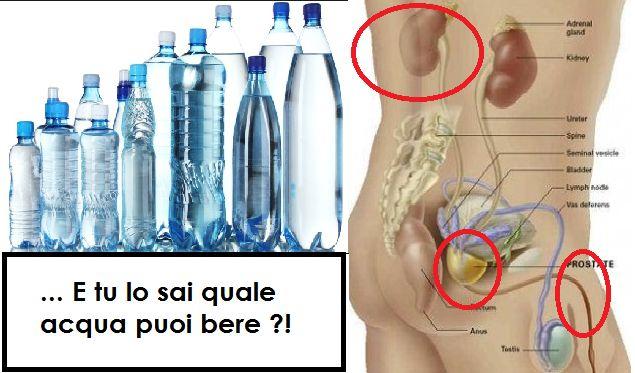 L'acqua non è tutta uguale e non tutta ci fa bene all'organismo. Occhio a non bere quella sbagliata...Ma come si fa a sapere se stiamo sbagliando? ECCO COME