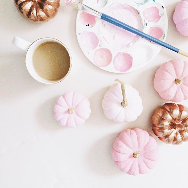Pink and copper pumpkins. #bts of an upcoming feature.