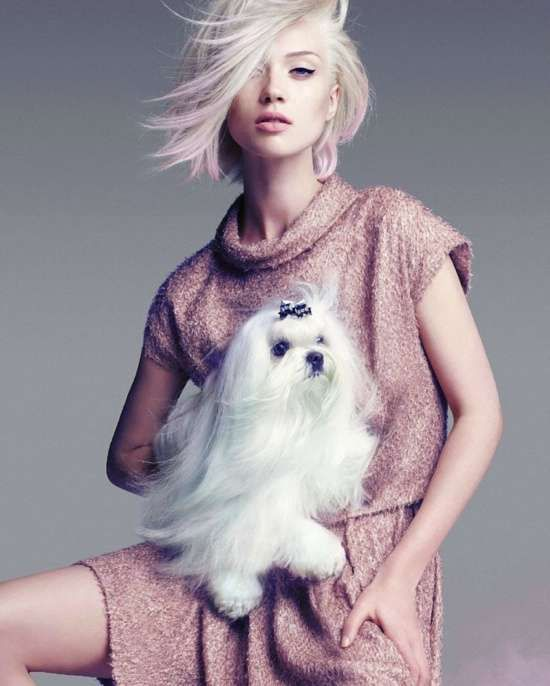 100 Pastel-Colored Hair Looks - From Purple Punk Editorials to Bold Multi-Ethnic Campaigns (TOPLIST)