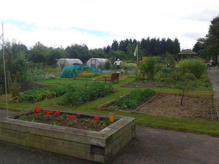 Community garden enderby, Leicester