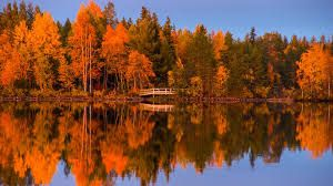 Image result for ruska suomi