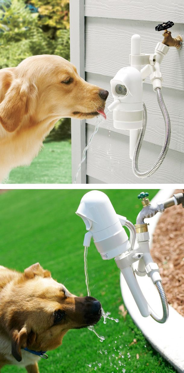Pet Fountain with a sensor that detects when your dog approaches and then shuts off when he leaves... genius! // by WaterDog Fountain
