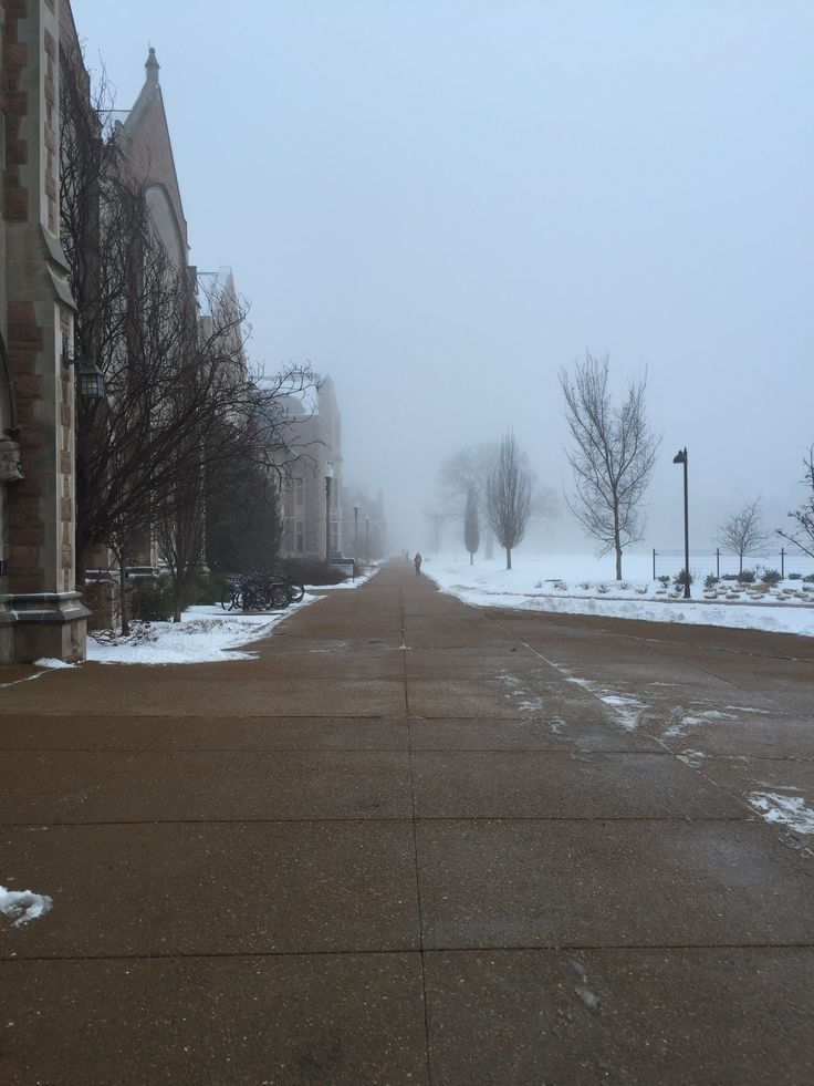 Winter Morning at Washington University in St. Louis, St. Louis, Missouri