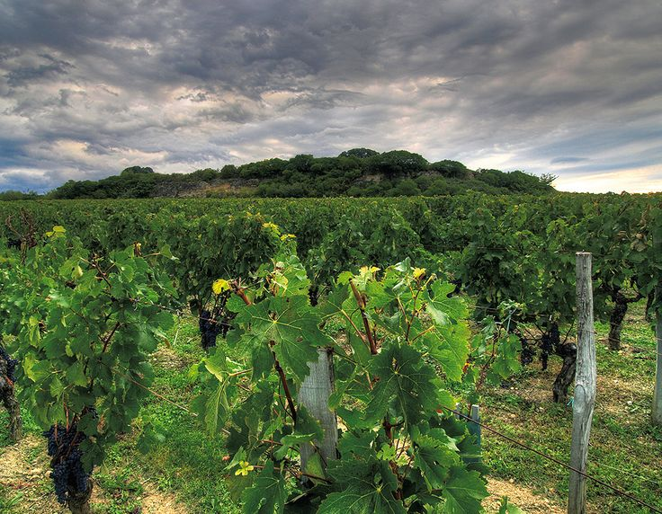 Known for its wine and vineyards, Saint Emilion in France was also named a UNESCO site for its monasteries and churches.