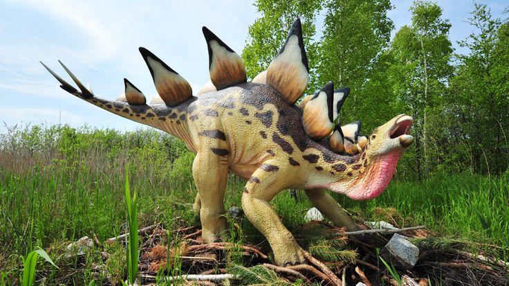 Łeba Dino Park